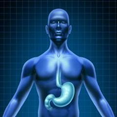 Traitement naturel Oesophagite, Hélicobacter Pylori, aphtes, aérophagie, stomatite, acidité gastrique, brûlure d'estomac - Digestconfort - Labosp.com