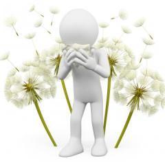 Traitement naturel des allergies respiratoires et des allergies cutanées -Hitacal - Labosp.com