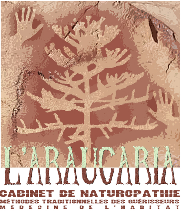 http://laraucaria.over-blog.com/